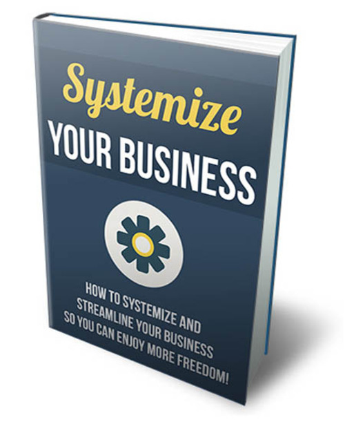 Product picture Systemize Your Business